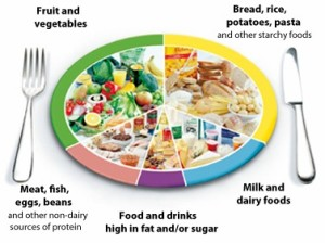 Diet for Post Pregnancy showing an eat well plate