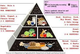low fat diet in understanding why we get fat